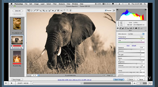 Photoshop CS5 And Photoshop CS5 Extented Tour Video